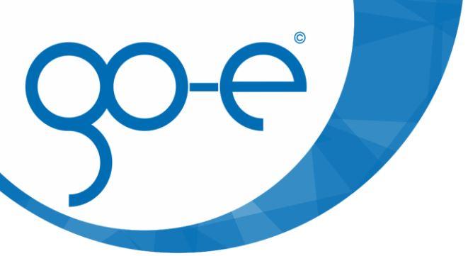 go-e Logo